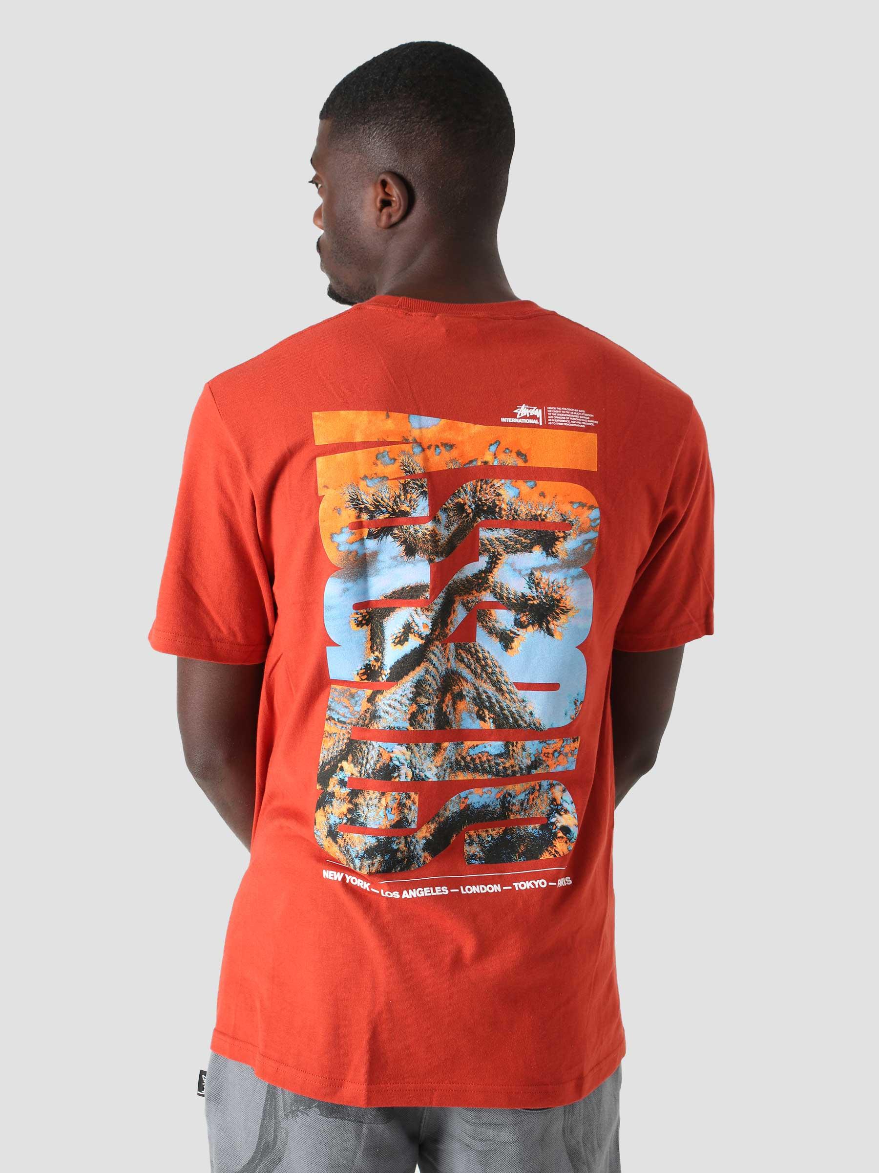 Desert Sky T-Shirt Brick 1904706