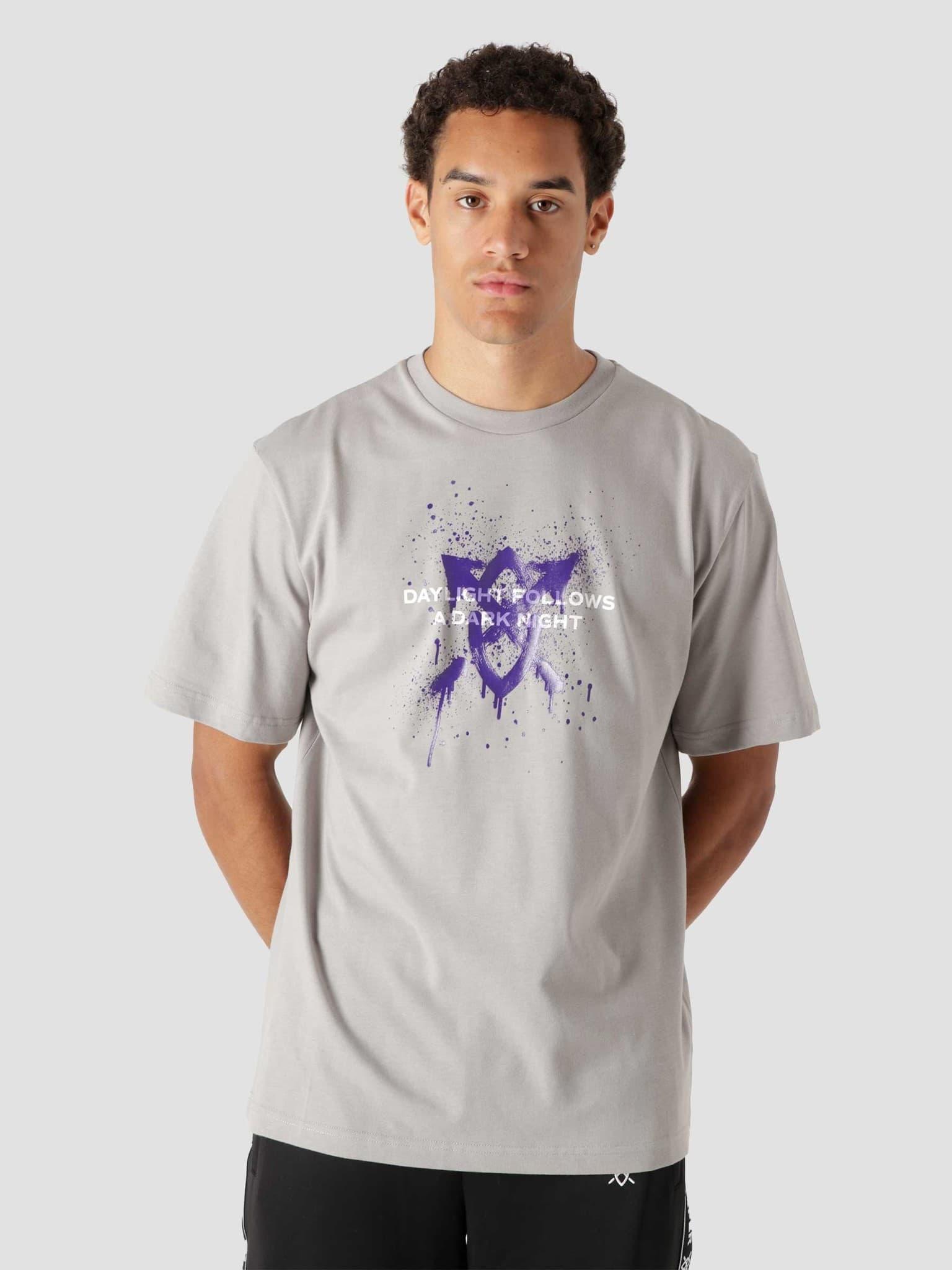 Lukus Ss T-Shirt Grey 2121005